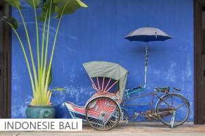 INDONESIE BALI  click