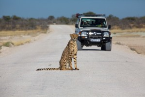 SST Namibie safari car1000x