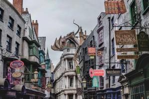 UNS Florida Harry Potter 1000x